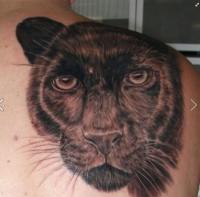 3d realistic black panther tattoo on shoulder blade