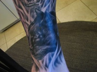 Black panther tattoo on arm
